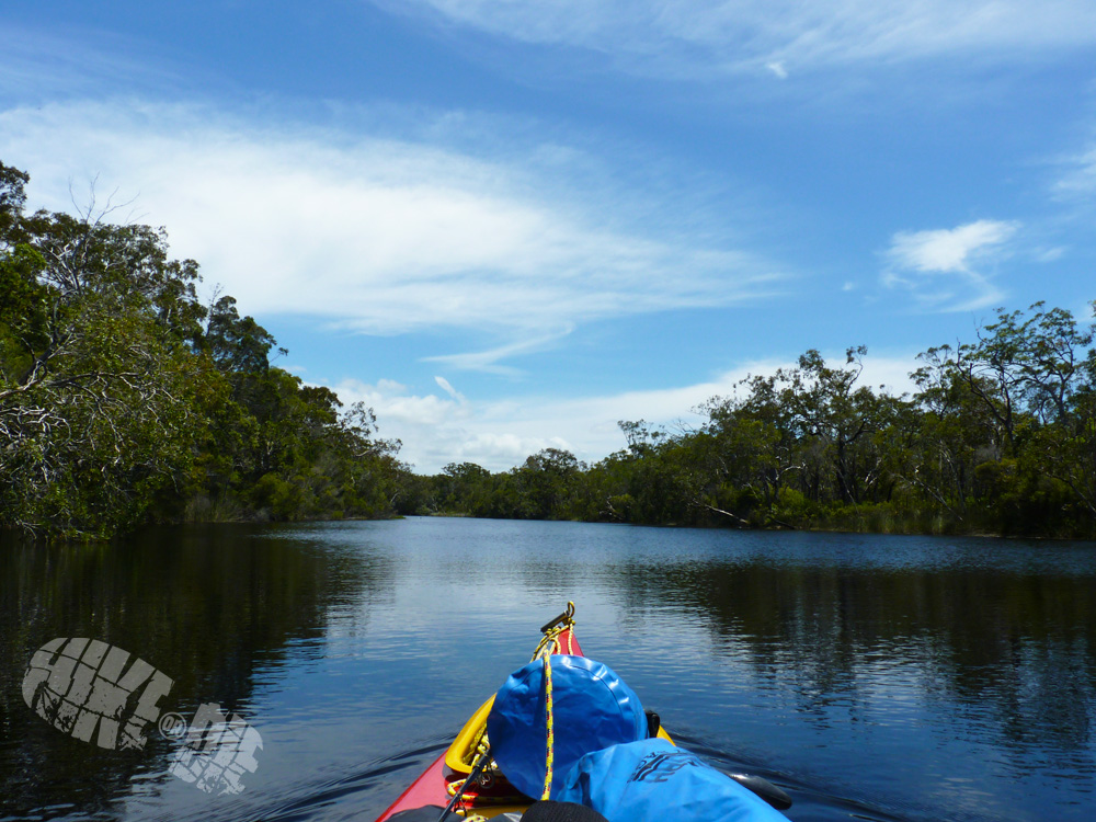Canoeing up the Noosa Everglades on my very first solo adventure. Click here to watch the full video.