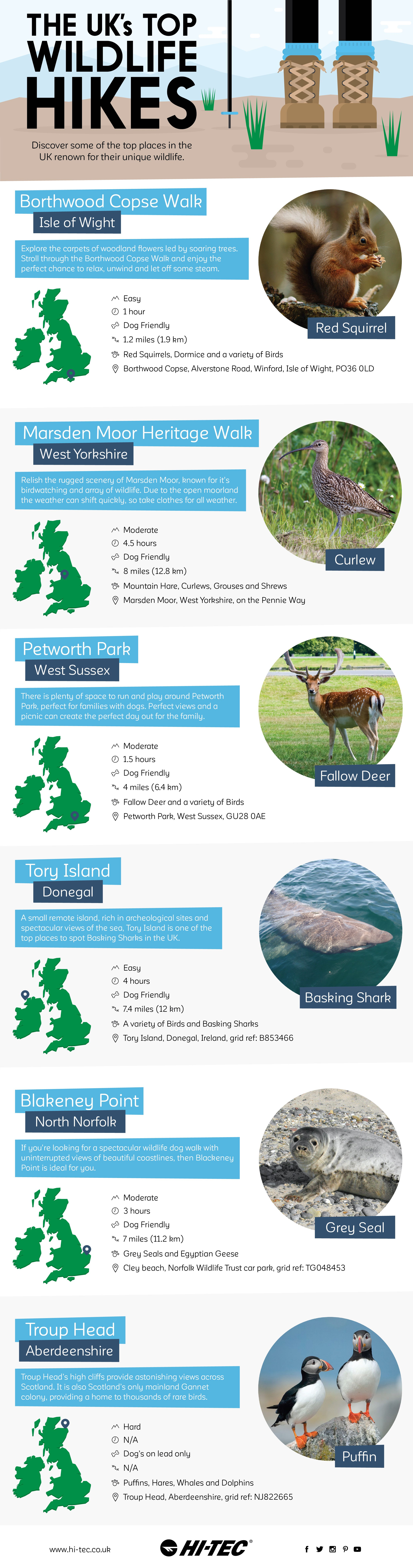 Plenty of wildlife to be found if you know where to look